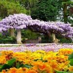 Jardins-Residenciais