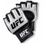 UFC-Training-Silver