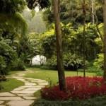 jardim-decorado-8